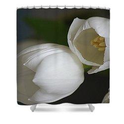 Romantic White Shower Curtain by Carol Lynch
