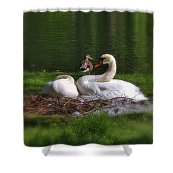Romeo And Juliet In Boston Shower Curtain by Joann Vitali