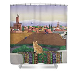 Rooftops In Marrakesh Shower Curtain by Larry Smart
