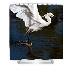 Rookery 15 Shower Curtain