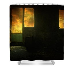 Room 9  Shower Curtain by Taylan Apukovska