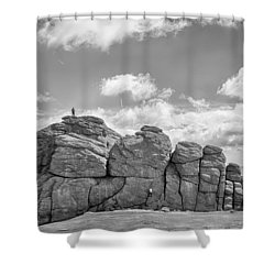 Room On Top Shower Curtain by Howard Salmon