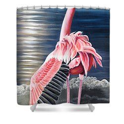 Shower Curtain featuring the painting Room With A View by Phyllis Beiser