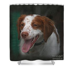 Rooney At The Back Door Shower Curtain