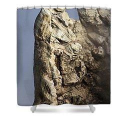 Roosevelt Geyser Shower Curtain by Adam Jewell