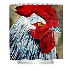 Shower Curtain featuring the painting Rooster Doodle by Julie Brugh Riffey