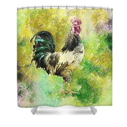 Rooster Shower Curtain by Taylan Apukovska