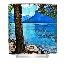 Shower Curtain featuring the photograph Rooted In Lake Minnewanka by Linda Bianic