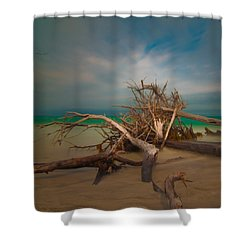 Roots 4 Shower Curtain