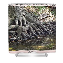 Roots With Verse Psalm 1 3 Shower Curtain