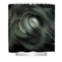 rose 18X24 1 Shower Curtain