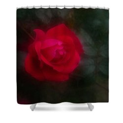 Shower Curtain featuring the photograph Rose 2 by Travis Burgess