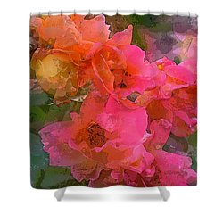 Rose 219 Shower Curtain
