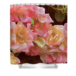 Rose 287 Shower Curtain
