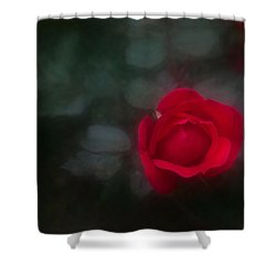 Shower Curtain featuring the photograph Rose 4 by Travis Burgess