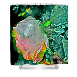 Rose 82 Shower Curtain