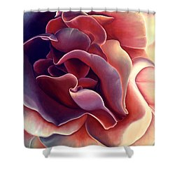 Rose Shower Curtain by Anni Adkins
