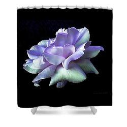 Rose Awakening Floral Shower Curtain