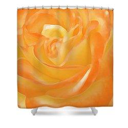 Rose Shower Curtain by Ben and Raisa Gertsberg