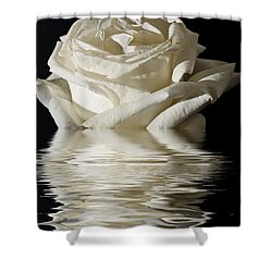 Rose Flood Shower Curtain by Steve Purnell