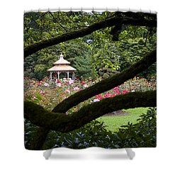 Shower Curtain featuring the photograph Rose Garden Window by Sonya Lang
