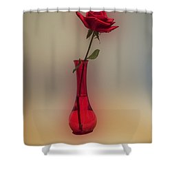Rose In A Vase Shower Curtain by Thomas Woolworth