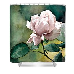 Shower Curtain featuring the painting Lilac Rose  by Greta Corens
