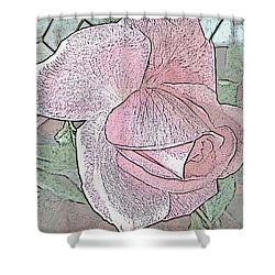 Shower Curtain featuring the photograph Rose by Judy Palkimas
