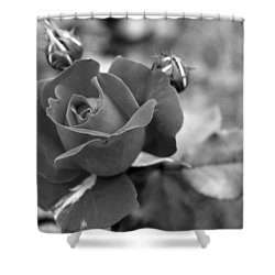 Rose Of Grace Shower Curtain by Faith Williams