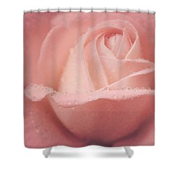Shower Curtain featuring the photograph Rose Of Rain by The Art Of Marilyn Ridoutt-Greene