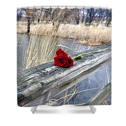 Shower Curtain featuring the photograph Rose On A Bridge by Verana Stark