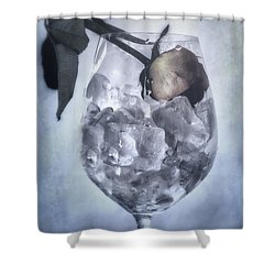 Rose On The Rocks Shower Curtain by Joana Kruse
