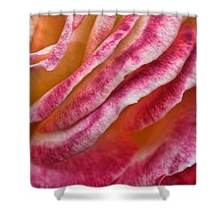 Rose Petals Shower Curtain