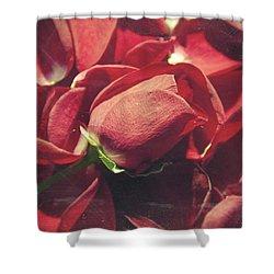 Rose Shower Curtain by Taylan Apukovska