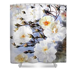 Rose Tchaikowsky A Stem Of White Roses And Buds Shower Curtain by Greta Corens