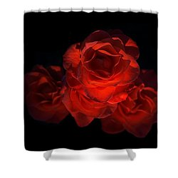 Shower Curtain featuring the photograph Rose Three by David Andersen