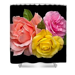 Rose Trilogy Shower Curtain by Jane McIlroy
