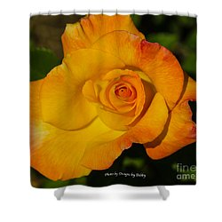 Shower Curtain featuring the photograph Rose Yellow Red by Debby Pueschel