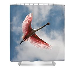 Roseate Soaring Shower Curtain