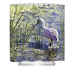 Roseate Spoonbill IIi Shower Curtain