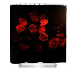 Roses And Black Shower Curtain