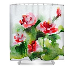 Roses Garden 3 Shower Curtain