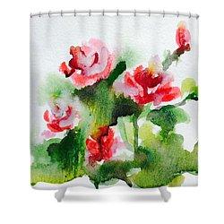 Roses Garden 3 Shower Curtain