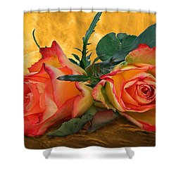 Love For Two Shower Curtain