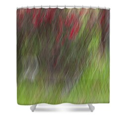 Roses Shower Curtain by Mark Alder
