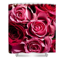 Shower Curtain featuring the photograph Roses by Matt Malloy