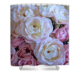 Roses On The Veranda Shower Curtain by Carol Groenen
