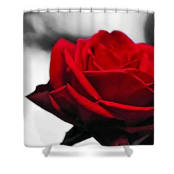 Rosey Red Shower Curtain