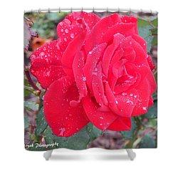 Rosie Red Shower Curtain
