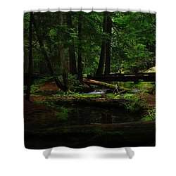 Ross Creek Montana Shower Curtain by Jeff Swan